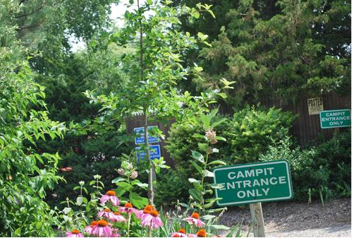 Campit Entrance