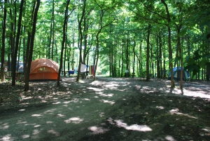 new_tent_area3